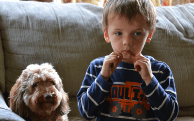 Childrens well being in Relocation Cases – Part III