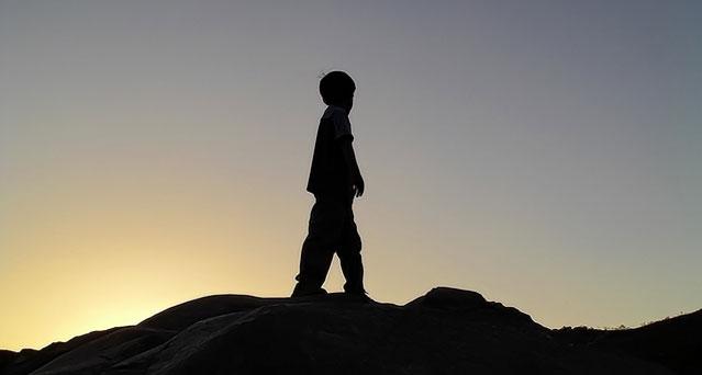 child abduction high court judgement